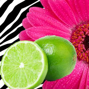 Best Fragrance Oils For Soap Hot Pink Lime Fragrance Oil