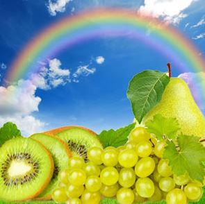 Best Floral Fragrance Oils Rainbow Fragrance Oil