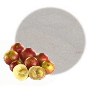 Herbs for Soap and Cosmetics Camu Camu Fruit Powder