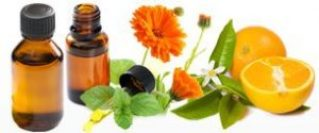 Is There a Difference Between Essential Oil and Fragrance Oil?: Essential Oils