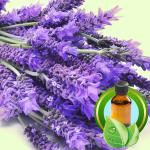 Best Essential Oil BlendsSnowball Soap Recipe Lavandin Grosso