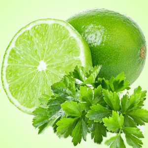 Strong Citrus Fragrance Oils Lime Cilantro Fragrance Oil