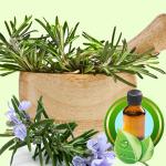 Soap for Acne Recipe: Rosemary Essential Oil