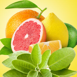 Strong Citrus Fragrance Oils Sage and Citrus Fragrance Oil