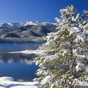 Fragrance Oils for Winter: Aspen Winter Type Fragrance Oil