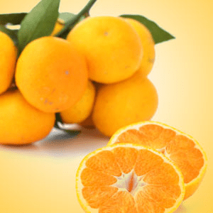 Popular Orange Fragrance Oils: Satsuma Fragrance Oil