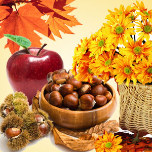 Denise's Favorite Fragrance Oils: Autumn Wreath