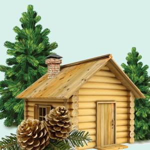 Best Christmas Fragrance Oils Balsam and Cedar Fragrance Oil