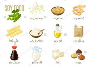 Soy Recipes
