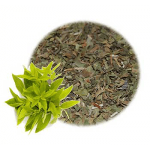 What is Lemon Verbena Used For?