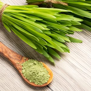 Barley Grass Powder Benefits: Other Uses