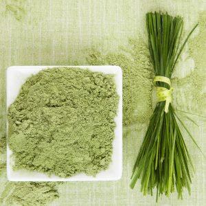 Barley Grass Powder Benefits: Bath and Body Benefits
