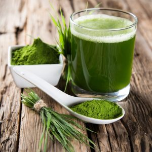 Barley Grass Powder Benefits: Food and Beverages