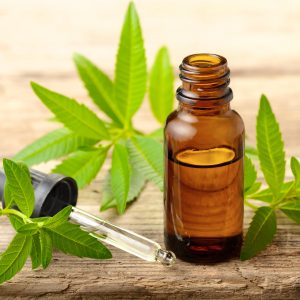 What is Lemon Verbena Used For?: Medicinal Uses