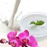 How Do You Make Scented Lotion?: Yogurt Multi Base Lotion