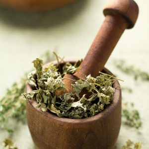 Parsley Powder Benefits: Medicinal Uses