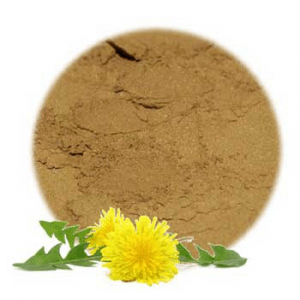 Herbs for Skin Problems: Dandelion Flowers