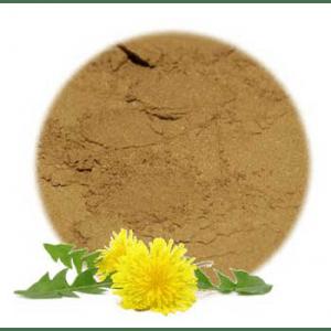 Herbs for Skin Problems: Dandelion Flowers