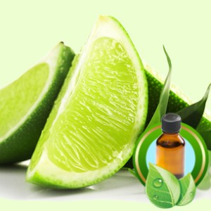 Lime Fragrance Oils for Scented Crafts: Key Lime Essential Oil