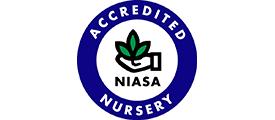 Accredited NIASA Nursery