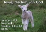 Joh 1:29 JESUS, DIE LAM VAN GOD