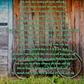 textgram_1475657014