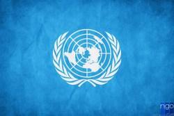 «Молодіжний делегат України до ООН -2016» – набір на програму відкрито!