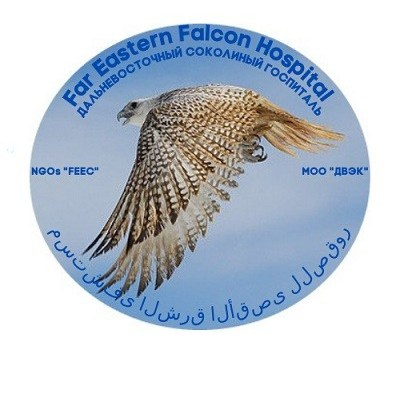 Far Eastern Falcon Hospital