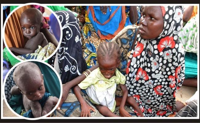 "Malnutrition rates in Nigeria ""horrifying"""