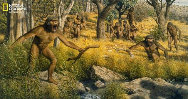 วิวัฒนาการมนุษย์
