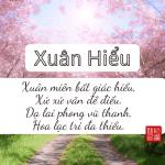 """Phân Tích Bài Thơ """"Xuân Hiểu"""" - Mạnh Hạo Nhiên"""
