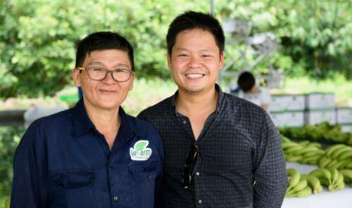 Chàng thạc sĩ kinh doanh Mỹ quyết về Việt Nam trồng chuối lập nghiệp