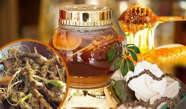 Tác dụng sâm ngọc linh ngâm mật ong