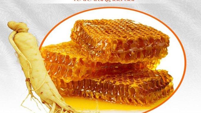 sâm ngâm mật ong