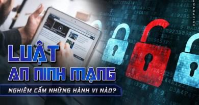 Bác bỏ luận điệu xuyên tạc Luật an ninh mạng của Phạm Thanh Nghiên
