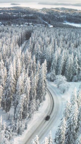 Hình mùa đông lạnh trên con đường xuyên rừng