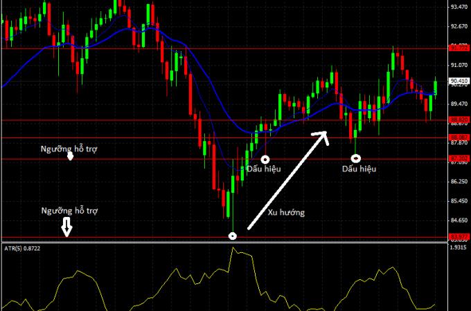 biểu đồ thị trường ngoại hối