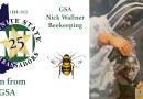 Learn from a GSA: Beekeeping with Nick W.