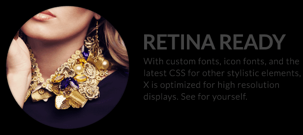 The X Theme for WordPress retina ready