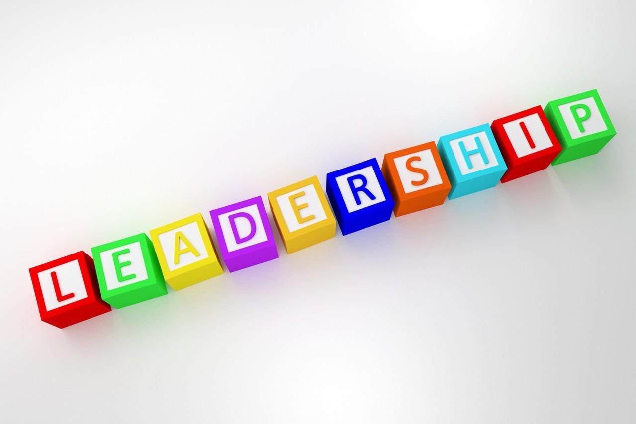 Why Do Executive Healthcare Leaders Choose Interim Roles?