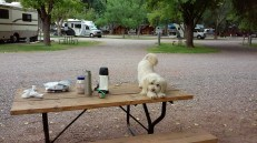 Breakfast at Campground