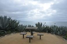 Treasure Island (11)