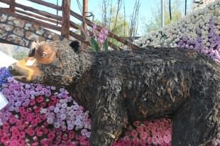 Rose Parade Floats 2016 (53)