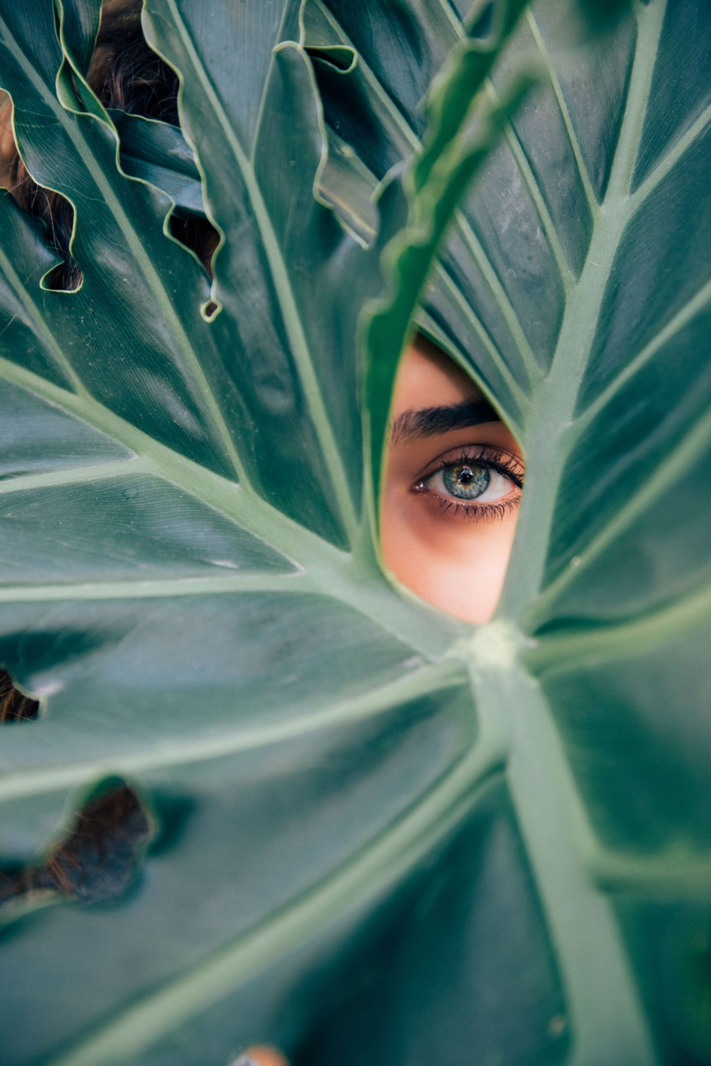 10 Natural Beauty Secrets from Around the World