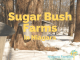 sugar bush farms