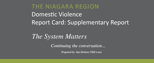Domestic Violence Report Card Supplementary Report 2013