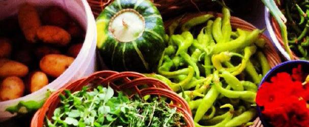 farmers market screen shot