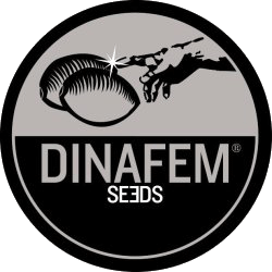 Dinafem Seeds - Feminized