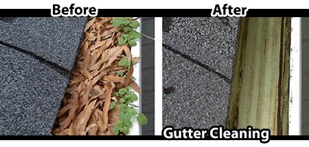 Niagara_Gutter_Cleaning