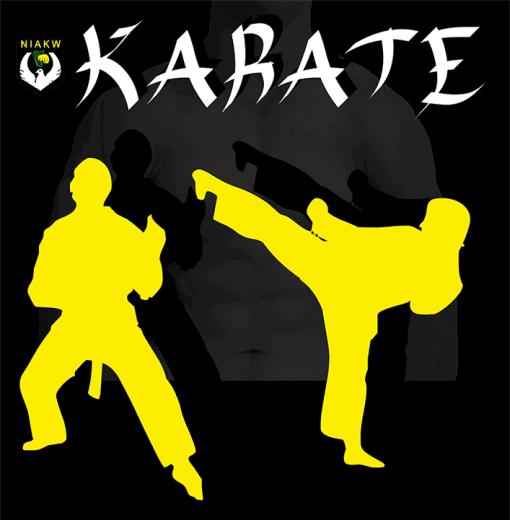 karate class graphic